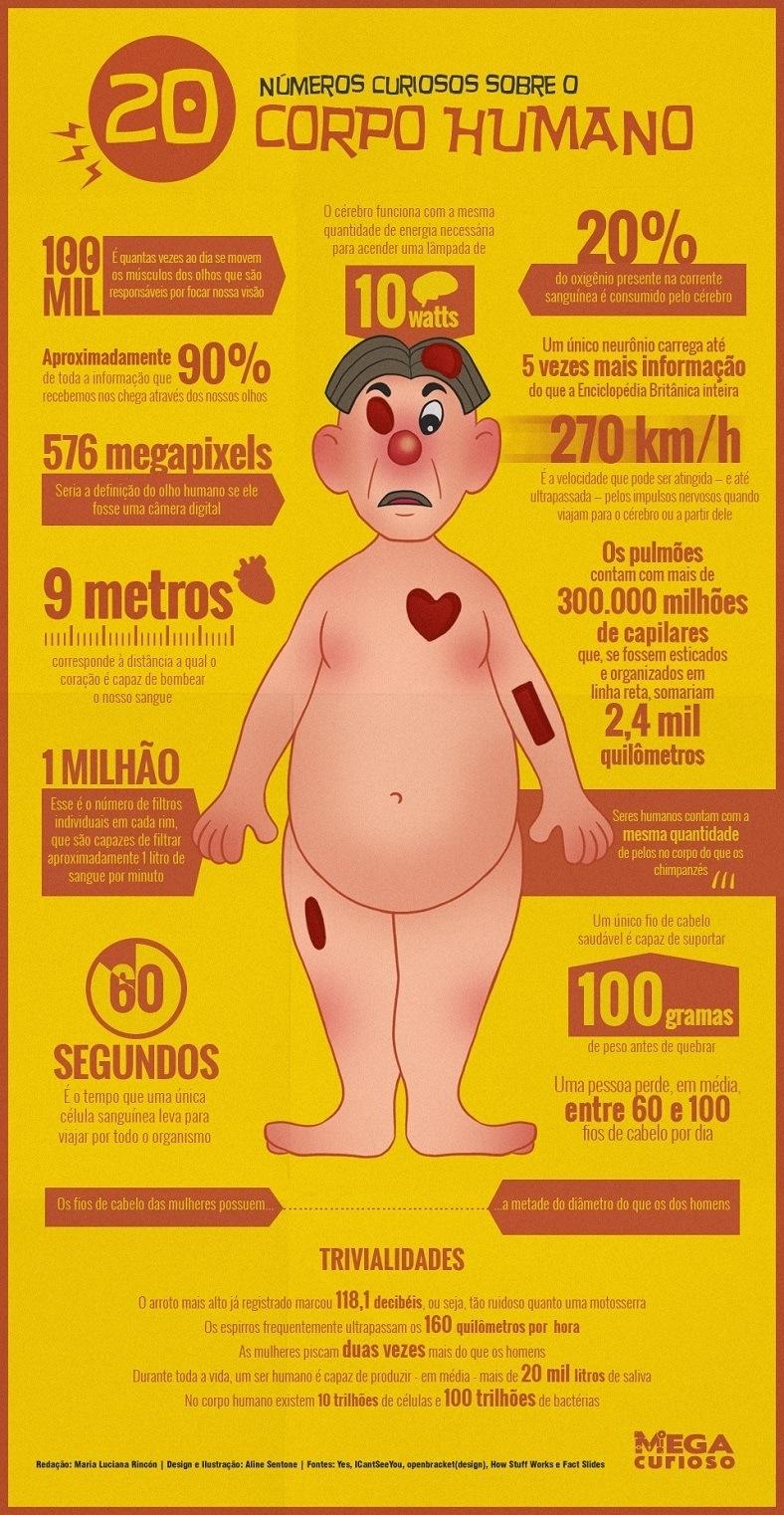 Curiosidades sobre o Corpo Humano: 20 números curiosos