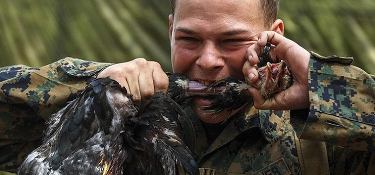 Treinamentos militares mais difíceis do mundo