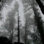 Lugares Misteriosos que você não conhecia