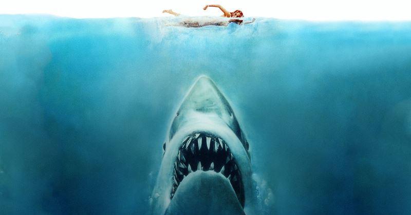 Melhores filmes de tubarão para assistir na Netflix, Now e Amazon