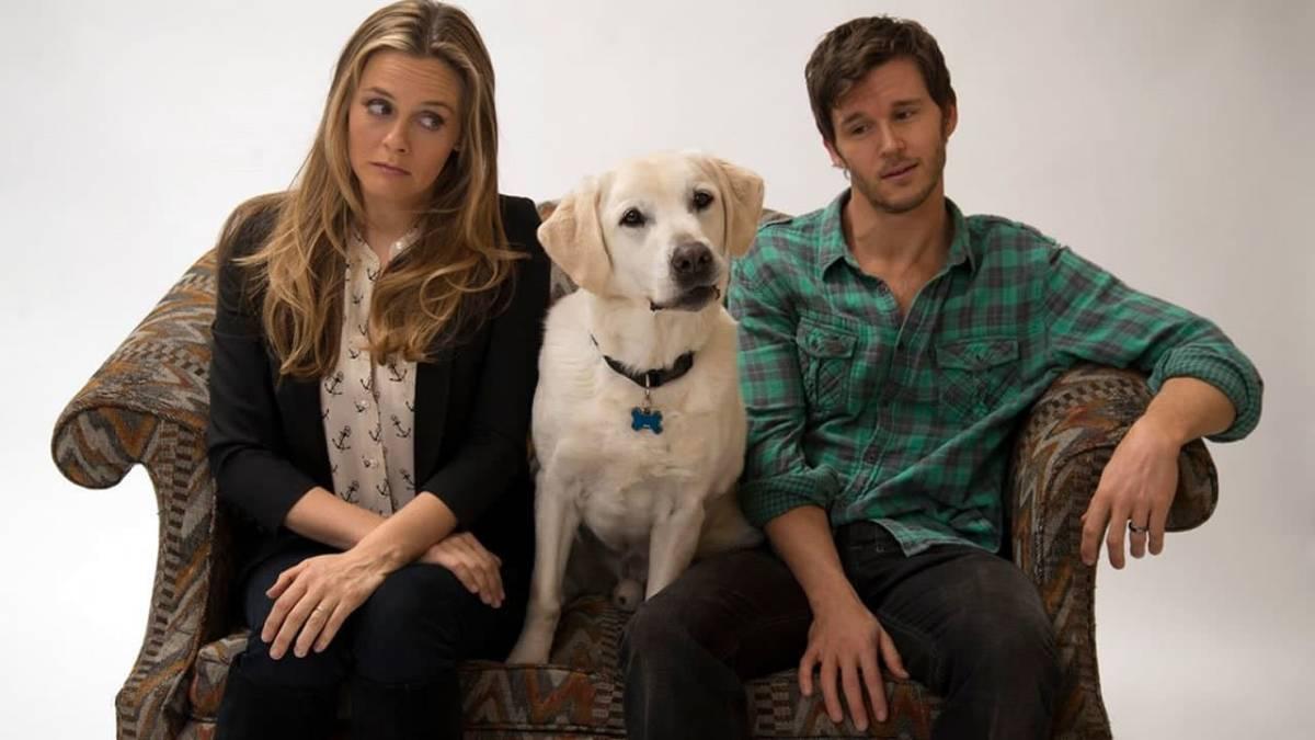 Cartaz do filme Um Cachorro para Dois - O Filme